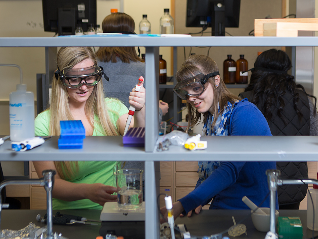 Students working with equipment in lab