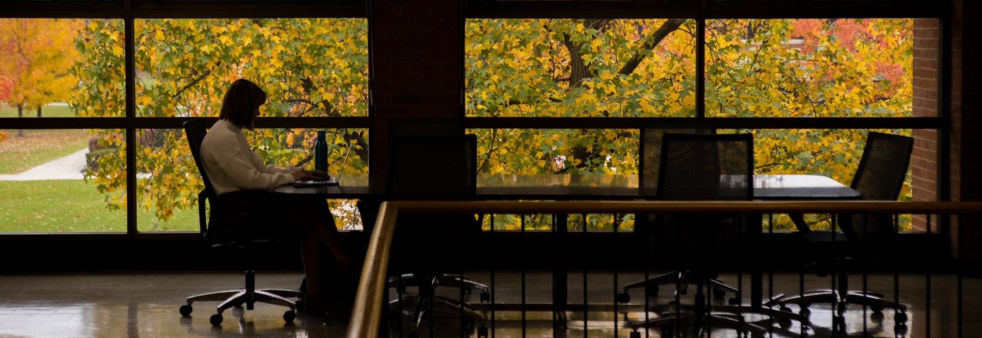 A student works in the Ohio Northern University 药学院. Fall leaves decorate the campus of Ohio Northern University.